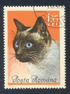 Siamese cat postal stamp