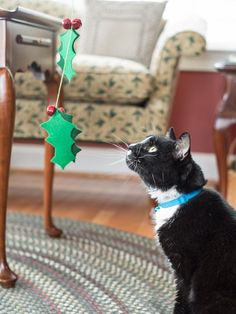 The handmade gift experts at HGTV.com share step-by-step instructions for making a holiday-themed spinner wand as a Christmas toy for your favorite kitty.