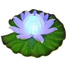 Fortune Products GL301ABW Floating Lily Pad Light  White Amber * Click image to review more details.