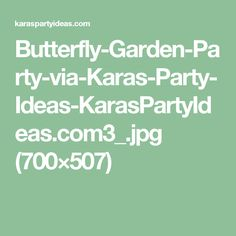 Butterfly-Garden-Party-via-Karas-Party-Ideas-KarasPartyIdeas.com3_.jpg (700×507)