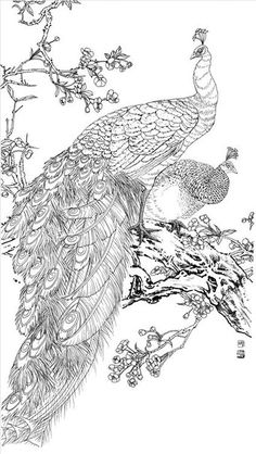 a sample image Peacock Drawing, Peacock Painting, Horse Canvas Painting, Cute Love Wallpapers, Glass Painting Designs, Stencil Printing, Japan Painting, Alien Concept Art, Art Deco Posters