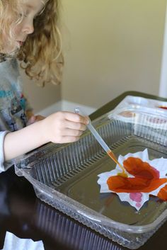 Gorgeous colour on this Fall Window Art - Leaf Suncatchers (includes Free Printable Template) Fall Window Decorations, Fall Classroom Decorations, Classroom Crafts, Fall Decor, Easy Fall Crafts, Fall Crafts For Kids, Thanksgiving Crafts, Toddler Crafts, Kids Crafts