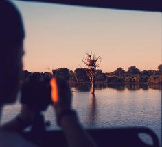 Game drives friends & an African sunset  by nicoleeddy