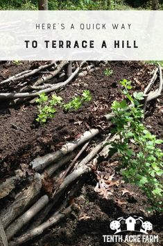 Here's a Quick Way to Terrace a Hill: Oftentimes we're challenged with less-than-ideal landscapes. Here's a solution to stop erosion on a hillside and create an easily-navigable terrace garden. #permaculture