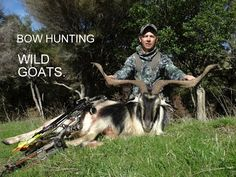 http://www.bestbowguides.com/bow-hunting-2/