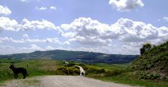"""the long and winding road"" Parafrasando i Beatles: ""La strada lunga e ventosa"""