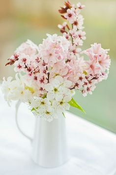Cherry blossom and hyacinth