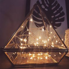 String Lights Cobre de volta ao nosso estoque! E assim combinada com nosso Miniterrário Pirâmide é puro amor. ☄💕 Link da loja online aqui no nosso perfil.    #DivirtaSeDecorando #stringlights #terrario #apartamento #designdeinteriores #arquitetura #diy #decor  #decoracao #homeoffice #cantinho #instadecor #casamento #inspiracao #plantinhas #ideiascriativas #interiores #luminaria #estiloescandinavo #cobre #prata #copper #segundafeira #decoracaocriativa #adesivosdeparede #decoracaodefesta