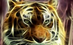 fractal tiger wallpaper | Tigers Fractalius Fresh New HD Wallpaper Best Quality | HD Wallpaper ...