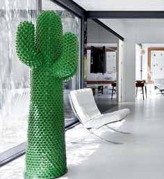 Elegant Want The Cactus! Good Looking