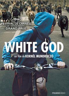 White God en DVD le 15 avril 2015 - Cinealliance.frCinealliance.fr