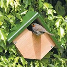nesting boxes yourself - great activity for bird lovers - roof-wood-green-painted-plant Build nesting boxes yourself - great activity for bird lovers - roof-wood-green-painted-plant Bird House Feeder, Bird Feeders, Simple Workbench Plans, Wood Projects, Woodworking Projects, Modern Birdhouses, Bird Houses Diy, Bird Boxes, Nesting Boxes