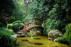 3. Perhaps one of the most peaceful places in Austin, right next door to Zilker Park - Zilker Botanical Gardens.