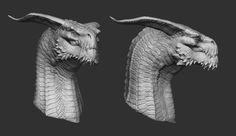 Bearded Dragon, Marlon Piloni on ArtStation at… Weird Creatures, Fantasy Creatures, Mythical Creatures, Zbrush, Creature Concept Art, Creature Design, Dragon Anatomy, Digital Sculpting, Monster Face