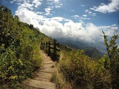 Beautiful trek into the wild at Doi Inthanon national park