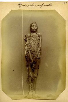 Mummified body of a man named Djed-ptah-anf-ankh (1886), by Jan Herman Insinger. Ancient Egypt Books, Ancient Aliens, Egyptian Symbols, Ancient Egyptian Art, Mummified Body, Egypt Mummy, Kemet Egypt, Egypt Museum, Egyptian Mummies