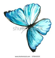 Illustration of a blue butterfly painted by hand with watercolors on paper