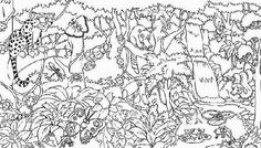 Rainforest Animals Coloring Pages | entering the eerie ...