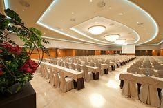 Verdi plenary meeting room #conferenceroom #meetingroom #samsav#