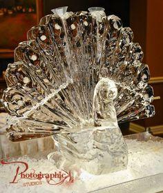 peacock~ ice sculpture