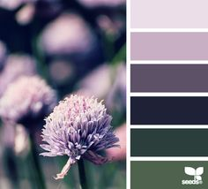 Sweet page!  //  Design Seeds - for all who love color  http://design-seeds.com/