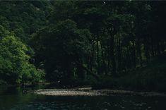 Wildswimming_1