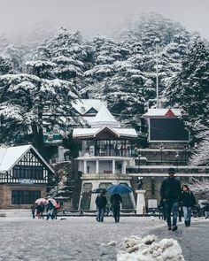 Shimla Manali Tourism is offering the most Popular Destinations of Himachal Pradesh to explore with its beautifully created Shimla Tour Packages and Manali Tour Packages. Travel And Tourism, India Travel, Snowfall In Shimla, Best Tourist Destinations, Dreamy Photography, Hill Station, Beautiful Places To Travel, Betta Fish, Winter Scenes
