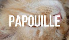 29 des mots les plus beaux de la langue française