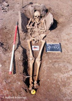 The skeleton of the medieval man, a possible knight, in his stone grave. - Headland Archaeology
