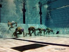 That looks cool! Swimming Funny, Swimming Memes, I Love Swimming, Swimming Diving, Swimming Pictures, Swimming Motivation, Sprint Triathlon, Swimmer Problems, Competitive Swimming