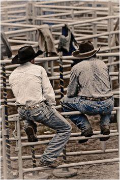 cowboys on the fence  http://media-cache8.pinterest.com/upload/201395414556005692_wJ3JPl4q_f.jpg https://www.tradze.com/gift-cardkaitikins Tradze.com good ride cowboy