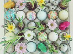 Suklaamarenki: pääsiäinen