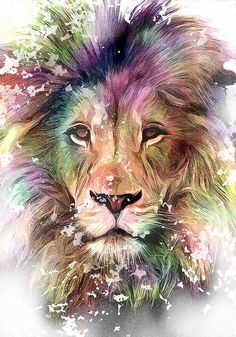teeomynk - 0 results for illustrations Lion King Art, Lion Of Judah, Lion Art, Lion Images, Lion Pictures, Lion Photography, Lion Wallpaper, Watercolor Effects, Animals Beautiful
