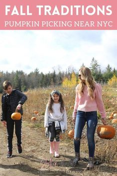 The Best Pumpkin Picking Near NYC | Stroller in the City Fun Fall Activities, Family Activities, Family Fun Places, Sibling Costume, Kid Picks, Unique Christmas Trees, Pumpkin Picking, Pony Rides, Diy Halloween Costumes For Kids