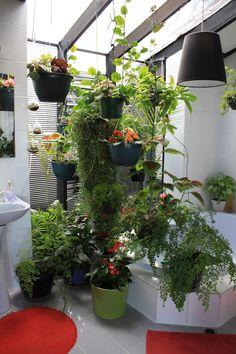 City of Ryde Spring Garden Competition 2013 - Hanging Bathroom Garden. #Garden #Gardens #Gardening #GreenThumb #Spring #Flowers #Azalea #Flora #Trees #Shrubs #Ryde #CityofRyde