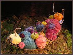 Hot Skwash velvet pumpkins... *swoon*