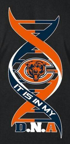 64 Ideas Sport Memes Football Chicago Bears For 2019 Nfl Bears, Bears Football, Football Memes, Sports Memes, Nfl Sports, Chicago Bears Tattoo, Nfl Chicago Bears, Chicago Bears Wallpaper, Chicago Bears Pictures