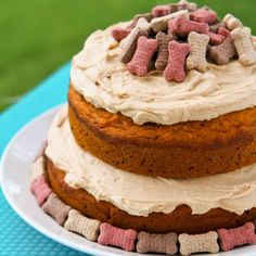 Homemade Dog cake Recipe: Homemade Dog Cake Recipe This easy Homemade Dog Cake Recipe has a tasty blend of peanut butter honey and carrots your dog will love it! Spoiled Dog Cake Recipe Love From The Oven Dog Safe Cake Recipe, Dog Cake Recipes, Dog Food Recipes, Pumpkin Dog Cake Recipe, Recipe Puppy, Pumpkin Cakes, Quick Recipes, Homemade Dog Treats, Homemade Recipe