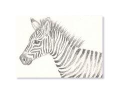 Zebra Original Art ACEO  Small pencil by TheKestrelAndTheSea, £5.00