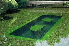 Interesting feature in this Koi carp pond in Kōraku-en, a Japanese garden located in  Okayama, Okayama Prefecture (photo by Mark Fountain).  http://www.flickr.com/photos/markfountain/sets/