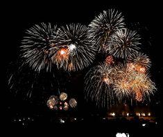 KOREA TRAVEL Busan Fireworks Festival at Gangwali Beach, Busan. Fireworks Festival, Selfie Stick, Busan, Getting Old, Travel Photography, South Korea, Beach, Flowers, Plants