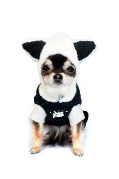 Chestnut Brown Snow Bunny Jumper by Hip Doggie on @HauteLook