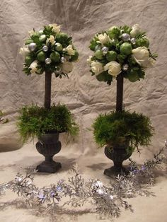 DIY Home Decor :DIY box and brusselsprout topiary : DIY Topiaries