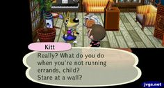 Yeah, I'm staring at the wall to imagine where to mount a kangaroo head. Jeff's ACCF Blog (Animal Crossing: City Folk)