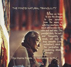"""THE MIND'S NATURAL TRANQUILITY  When we begin to win the struggle to free ourselves from the waves of afflictive emotions, the mind will become like a calm and vast lake. This peaceful state, the natural tranquility of mind, will lead to deep samadhi [concentration], which is the pacification of wandering, deluded thoughts.    Dilgo Khyentse Rinpoche, """"An Investigation of the Mind"""""""