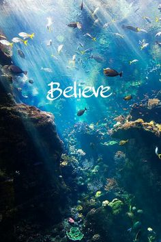 #believe #sea #sfondi