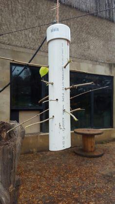 Very simple kerplunk feeder for primates
