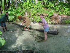 Image result for kavieng
