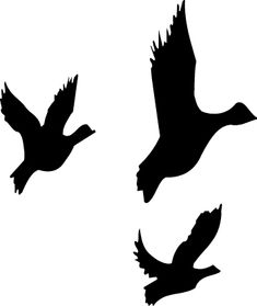 sihouette art for children Duck Silhouette, Silhouette Clip Art, Book Crafts, Hobbies And Crafts, Black N White Images, Black And White, Catcher In The Rye, Free Clipart Images, Embroidery Transfers