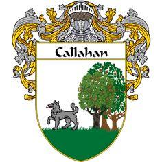 Callahan in Ireland
